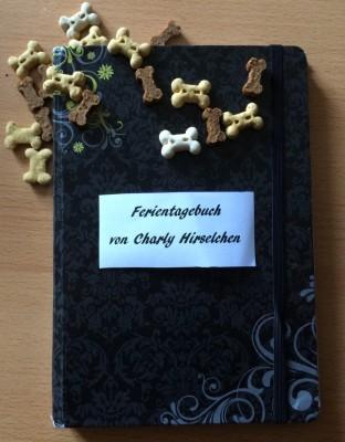 Tagebuch deutsch